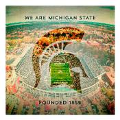 We are Michigan State University Wall Art