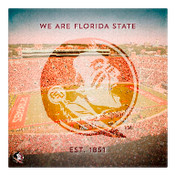We are Florida State University Wall Art