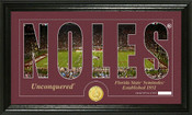 "Florida State Seminoles ""Silhouette"" Photo Mint"