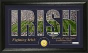 "Notre Dame Fighting Irish ""Silhouette"" Photo Mint"