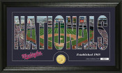 "Washington Nationals ""Silhouette"" Bronze Coin Panoramic Photo Mi"