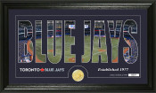 "Toronto Blue Jays ""Silhouette"" Bronze Coin Panoramic Photo Mint"