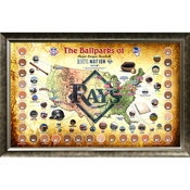 Tampa Bay Rays Ballpark Map Framed Collage w/Game Used Dirt