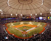 Tampa Bay Rays at Tropicana Field Poster