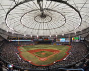 Tampa Bay Rays at Tropicana Field Poster 1