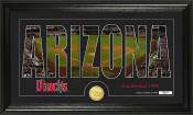 "Arizona Diamondbacks ""Silhouette"" Bronze Coin Photo Mint"