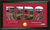 "Cincinnati Reds ""Silhouette"" Bronze Coin Panoramic Photo Mint"