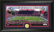 "Ole Miss Rebels ""Vaught Hemingway Stadium"" Minted Coin Panoramic"