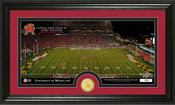 "Maryland Terrapins ""Byrd Stadium"" Panoramic Photo Mint"