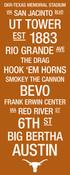 Texas Longhorns/Royal Memorial Stadium College Town Wall Art wti