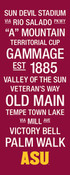 Arizona State Sun Devils/Sun Devil Stadium College Town Wall Art