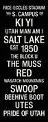 Utah Utes/Rice Eccles Stadium College Town Wall Art