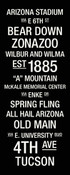 Arizona Wildcats/Arizona Stadium College Town Wall Art