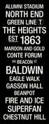Boston College Eagles/Alumni Stadium College Town Wall Art