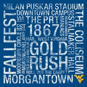 West Virginia Mountaineers/Mountaineer Field College Colors Subw