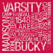 Wisconsin Badgers/Camp Randall Stadium College Colors Subway Art