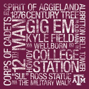 Texas A&M Aggies/Kyle Field College Colors Subway Art