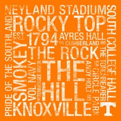 Tennessee Volunteers/Neyland Stadium College Colors Subway Art