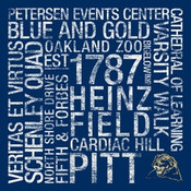 Pitt Panthers/Heinz Field College Colors Subway Art