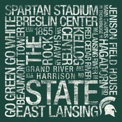 Michigan State Spartans/Spartan Stadium College Colors Subway Ar