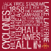 Iowa State Cyclones/Trice Stadium College Colors Subway Art