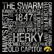 Iowa Hawkeyes/Kinnick Stadium College Colors Subway Art