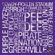East Carolina Pirates/Dowdy Ficklen Stadium College Colors Subwa