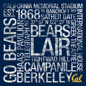 Cal Golden Bears/Memorial Stadium College Colors Subway Art