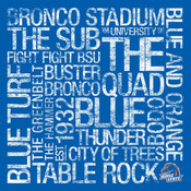 Boise State Broncos/Boise Stadium College Colors Subway Art