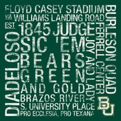 Baylor Bears/Floyd Casey Stadium College Colors Subway Art