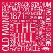 Arkansas Razorbacks/Razorback Stadium College Colors Subway Art