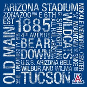 Arizona Wildcats/Arizona Stadium College Colors Subway Art
