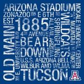Arizona Wildcats/Arizona Stadium College Colors Subway Art