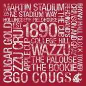 Washington State Cougars/Martin Stadium College Colors Subway Ar