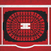 Chicago Bulls - United Center City Print