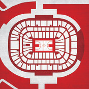 NC State Wolfpack -PNC Arena City Print
