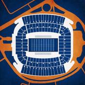 Auburn Tigers - Jordan Hare Stadium City Print