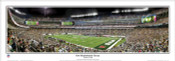 """New Meadowlands Victory"" New York Jets Panoramic Poster"