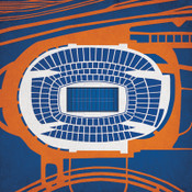 Soldier Field City Print
