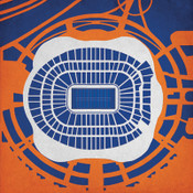 Sports Authority Field City Print