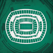 MetLife Stadium Jets City Print