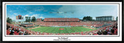 """The Wolfpack"" Carter Finley Stadium Panoramic Poster"