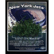 Giants Stadium New York Jets Game-Used Turf Plaque