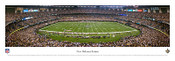 New Orlean Saints at the Superdome Panorama Poster