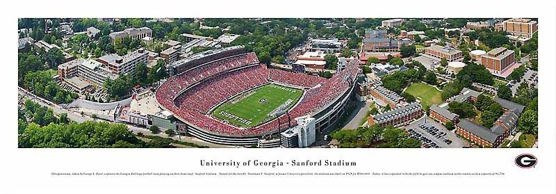 """Bulldogs"" Georgia Bulldogs Panoramic Poster"