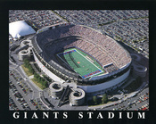 Giants Stadium New York Giants Aerial Poster