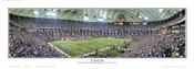 """16 Yard Line"" Minnesota Vikings Panoramic Poster"