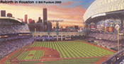 """Rebirth in Houston"" Houston Astros Print"