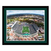 Michigan State Spartans - Spartan Stadium Art