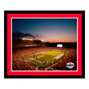 Georgia Bulldogs - Sanford Stadium Art